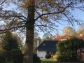 Apartmán Sýkorky pohled zahrada
